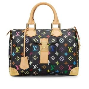 Louis Vuitton Speedy 30 multi color handbag